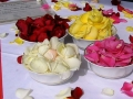 silk rose petals for naming ceremony
