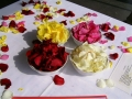 rose petals for naming day
